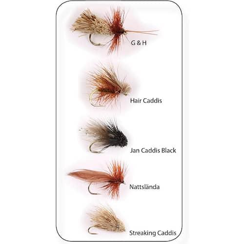 Wiggler Dry Fly Sedges #12 5-pack