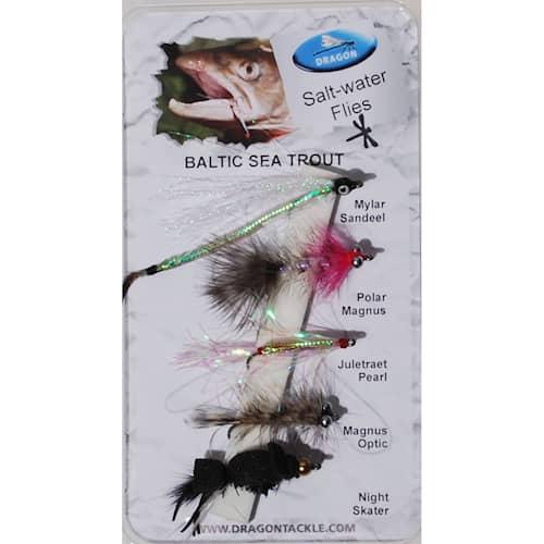 Dragon Baltic Sea Trout 5-pack